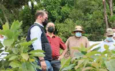 Recorren funcionarios mexiquenses cafetales en Amatepec