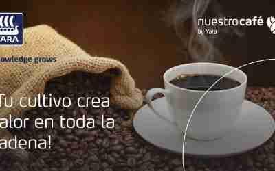 Mejorar la calidad de vida del caficultor, la meta del café mexicano de especialidad