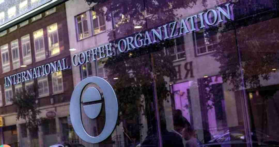 Incertidumbre por suministro y aumento del transporte, causas del alza del precio del café