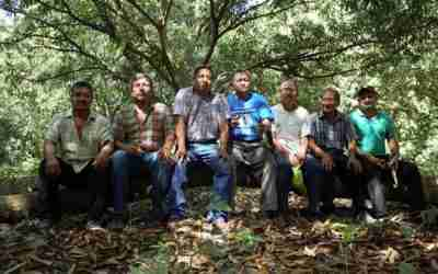 Rainforest e INIFAP capacitan a productores chiapanecos de café y cacao