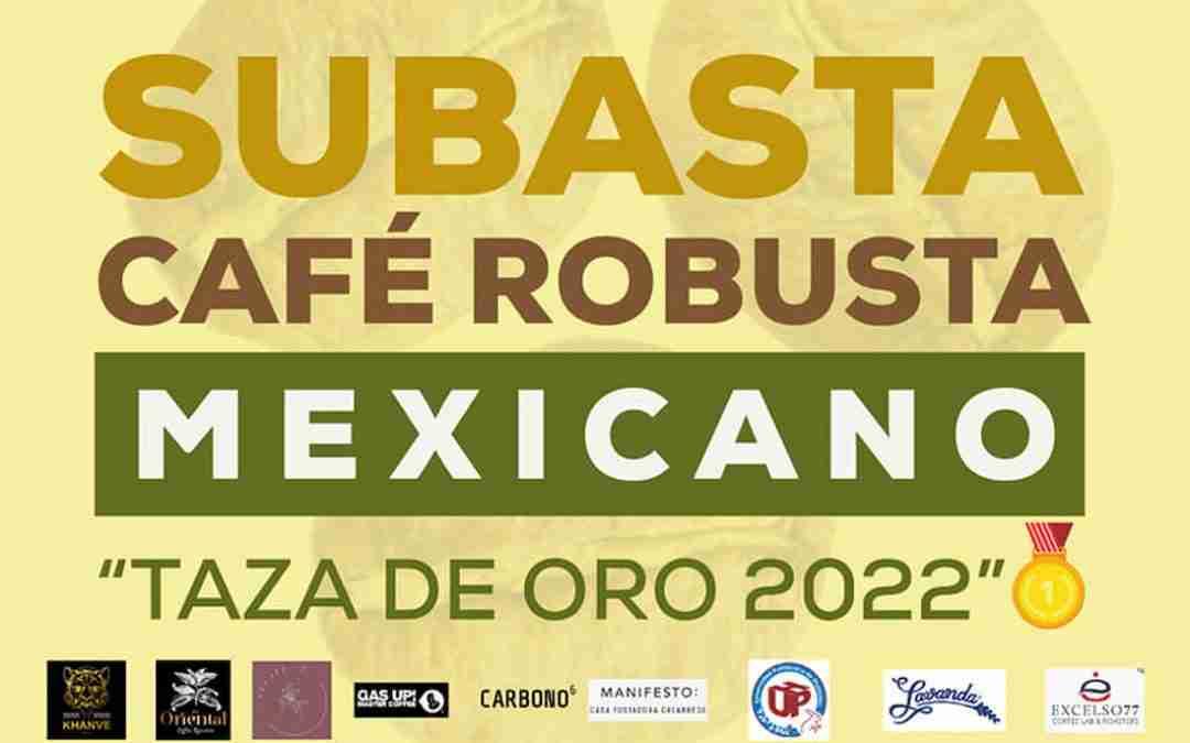 Alistan para mayo de 2022 subasta de cafés mexicanos robusta de especialidad